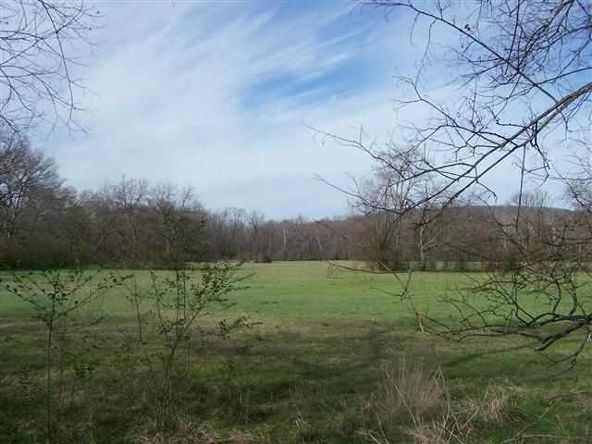 194 Acres Glazypeau Rd., Murfreesboro, AR 71958 Photo 19
