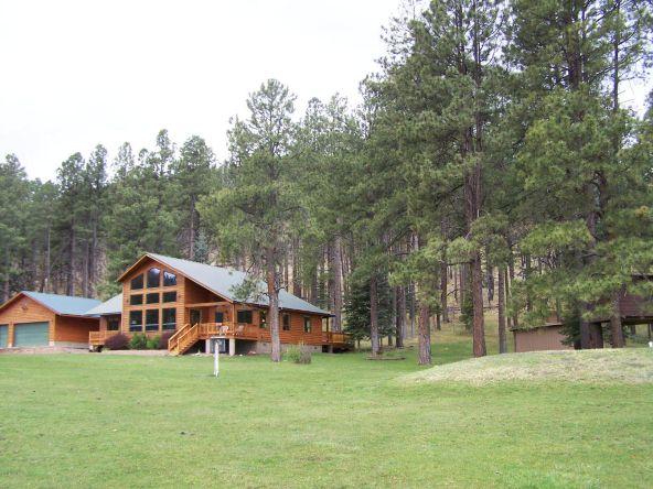 1 County Rd. 2153, Alpine, AZ 85920 Photo 4