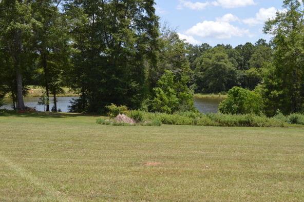 306 Turtleback Trail, Enterprise, AL 36330 Photo 20