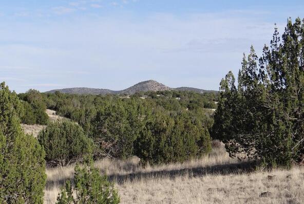 522 Sierra Verde Ranch, Seligman, AZ 86337 Photo 9