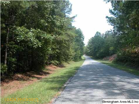 2 Acres Co Rd. 895, Lineville, AL 36266 Photo 1