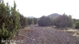 10705 N. Falcon Ridge, Williams, AZ 86046 Photo 7
