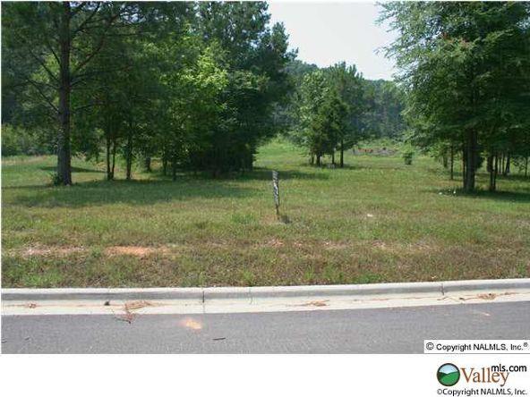 101 Lake Creek Dr., Guntersville, AL 35976 Photo 3
