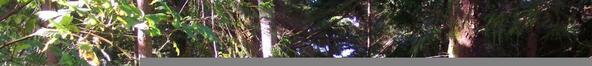 481 Salishan Hills, Gleneden Beach, OR 97388 Photo 10