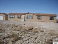 Home for sale: 4640 Benson Rd., Fallon, NV 89406