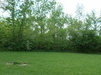 Home for sale: 107 Hilltop Dr., Bellevue, OH 44811