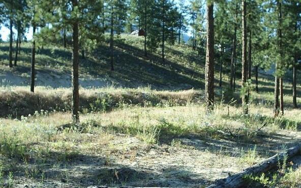 1269 Ruffed Grouse Way, Kettle Falls, WA 99141 Photo 20