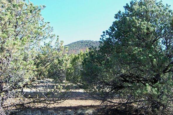 7217 N. Audrey Way, Williams, AZ 86046 Photo 18