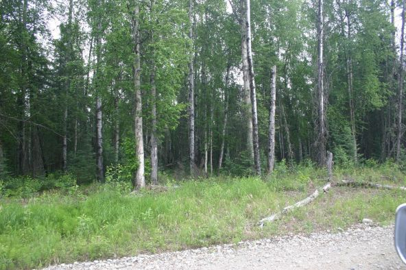 5041 N. Infinite Rd., Wasilla, AK 99654 Photo 1