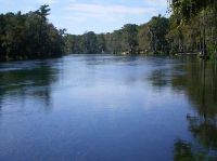 Home for sale: Lot 81 Mysterious Waters Rd., Crawfordville, FL 32327