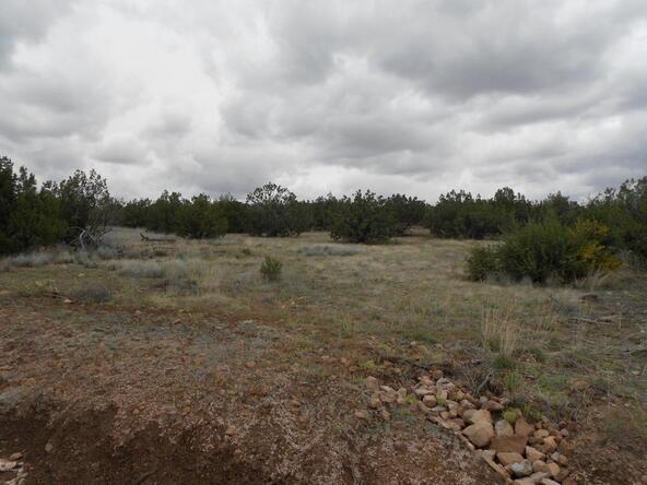 4650 W. Dillon Wash Rd., Prescott, AZ 86305 Photo 17