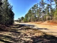Home for sale: 0 Hwy. 42 Richardson Mill Rd., Roberta, GA 31078