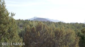 10705 N. Falcon Ridge, Williams, AZ 86046 Photo 8