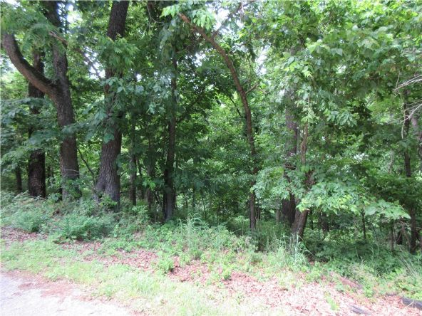 73 Saturn Ave., Holiday Island, AR 72631 Photo 3