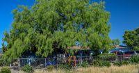 Home for sale: 360 S. Groseta Dr., Camp Verde, AZ 86322