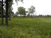 Home for sale: 710 Aedc Rd., Hillsboro, TN 37342