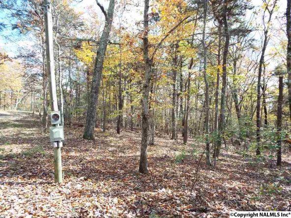 195 County Rd. 844, Mentone, AL 35984 Photo 12