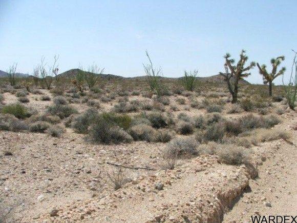 3054/58 Dateland Rd., Yucca, AZ 86438 Photo 9