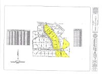 Home for sale: Lot 24 County Rd. 688, Chancellor, AL 36316