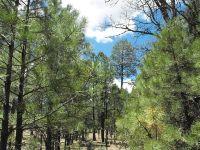 Home for sale: 3027 Durango Dr., Happy Jack, AZ 86024