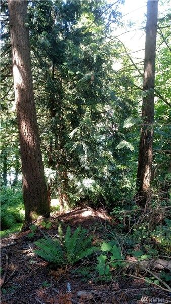 1805 Emerald Lake Way, Bellingham, WA 98226 Photo 2