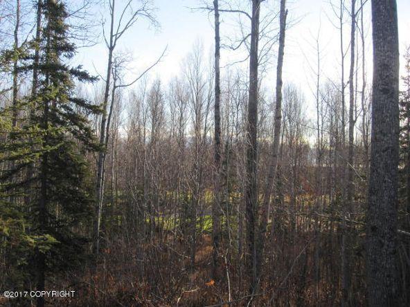 7645 S. Settlers Bay Dr., Wasilla, AK 99623 Photo 3