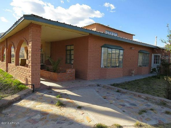 12084 N. Via Animas --, Portal, AZ 85632 Photo 8