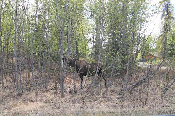 4360 N. Bull Moose Dr., Wasilla, AK 99654 Photo 102