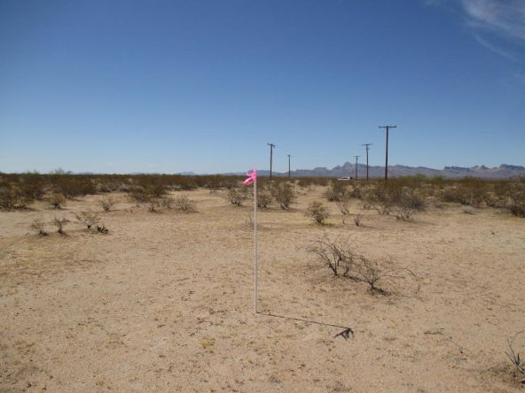 59500 N. Eagle Eye Rd., Tonopah, AZ 85354 Photo 3