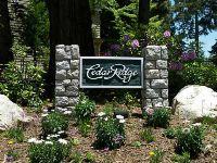 Home for sale: 399 Cedar Ridge, Lake Arrowhead, CA 92352