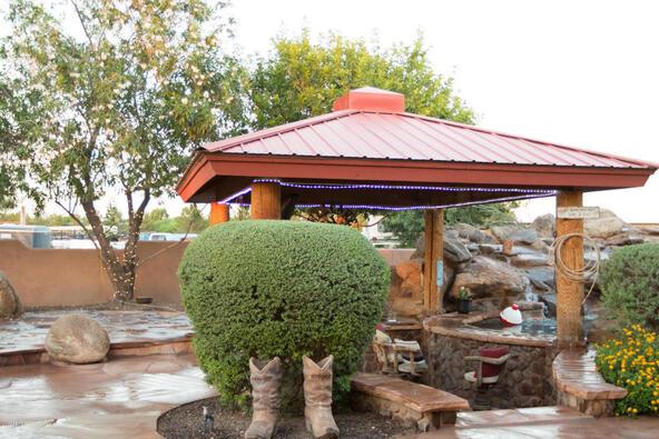 41587 N. Coyote Rd., San Tan Valley, AZ 85140 Photo 43