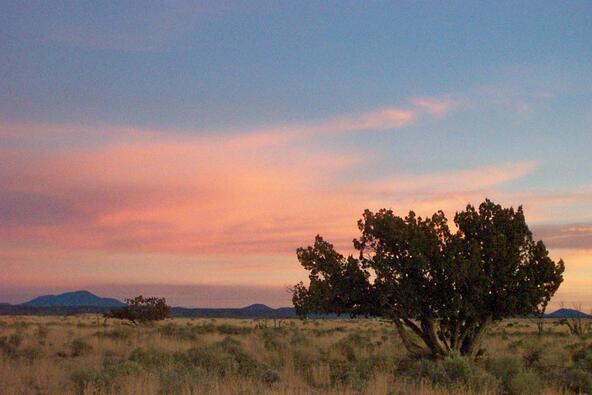 6218 S. Prairie Grass Ln., Williams, AZ 86046 Photo 20