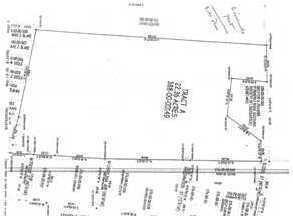 0 Lincoln Avenue, Lincolnville, SC 29485 Photo 1