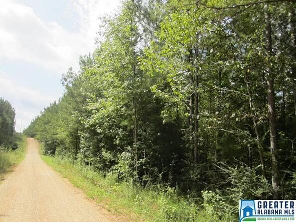 3.1 Acres Thomas Ln., Ashland, AL 36251 Photo 5