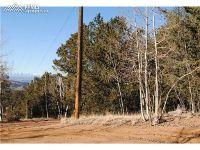 Home for sale: 351 Wellington Dr., Cripple Creek, CO 80813