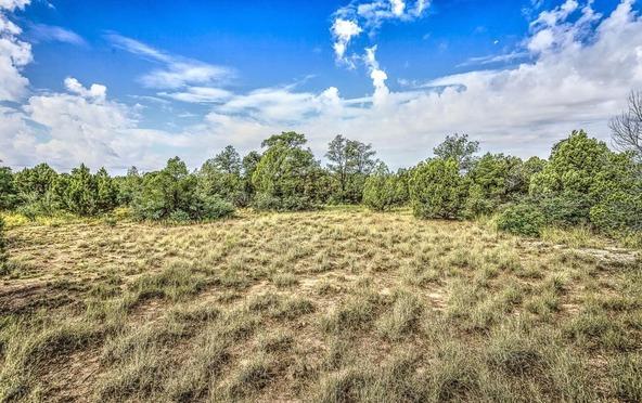 4795 Three Forks Rd., Prescott, AZ 86305 Photo 8