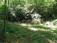 Home for sale: 9999 Flynn Branch, Fletcher, NC 28732
