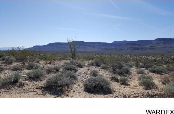 4332 W. Sunset Rd., Yucca, AZ 86438 Photo 17