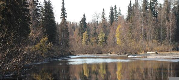 14837 E. Gold Miners Way, Willow, AK 99688 Photo 5