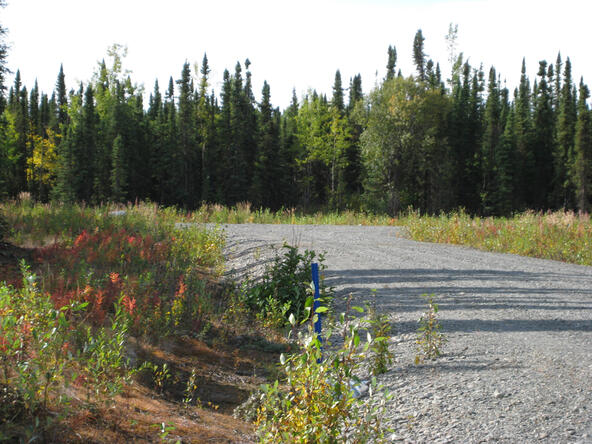 L11 B3 Fairweather Loop, Soldotna, AK 99669 Photo 1