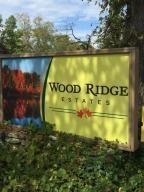 Home for sale: Lot 4 Wood Ridge Dr., Blue Eye, MO 65611