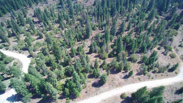Lot 19 Forest Highlands, Boise, ID 83716 Photo 11