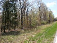 Home for sale: 00 State Hwy. Bb, Seymour, MO 65746