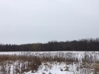 Home for sale: 20+/- Ac. Stoney Brook Dr., Manitowoc, WI 54220