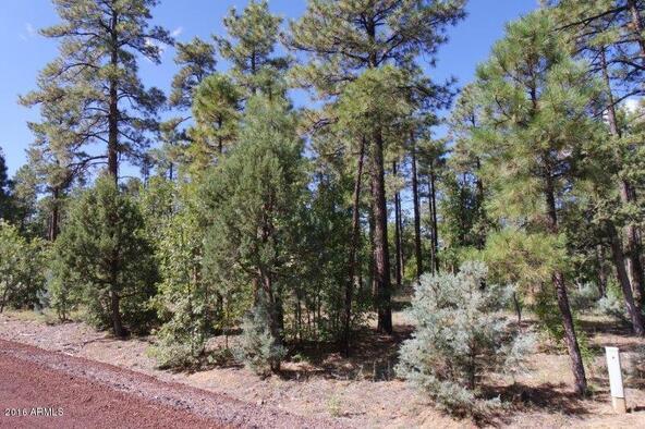 2850 W. Richardson Ln., Lakeside, AZ 85929 Photo 4