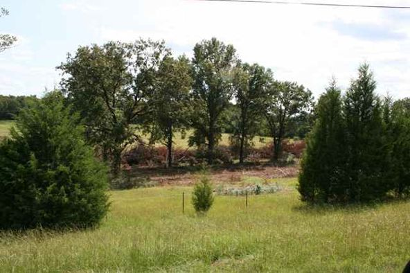 274 Hwy. 64 E., Conway, AR 72032 Photo 6