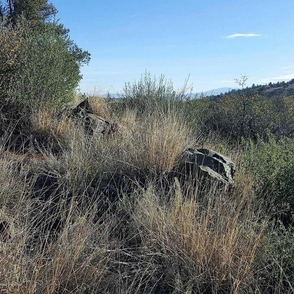 5227 E. Canyon View Ct., Prescott, AZ 86303 Photo 4