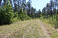 Home for sale: Lot 7 Rye Patch Rd., Ludowici, GA 31316