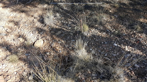 3060 N. Panamint Ln., Chino Valley, AZ 86323 Photo 10