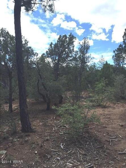 800 E. Pine Oaks Dr., Show Low, AZ 85901 Photo 4